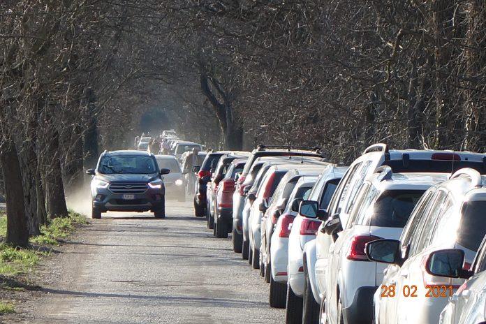 Bosco Fontana preso d'assalto dai visitatori: parcheggi esauriti. In tanti costretti a tornare indietro